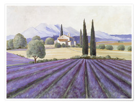 Premiumposter  Lavender Fields - Franz Heigl