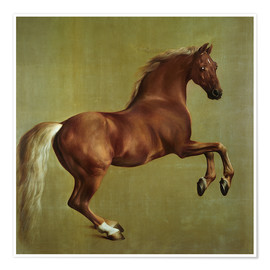 Premiumposter  Whistlejacket - George Stubbs