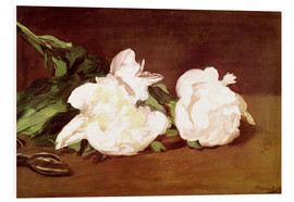 PVC-tavla  Branch of White Peonies and Secateurs - Edouard Manet
