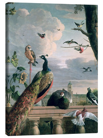 Canvastavla  Palace of Amsterdam with exotic birds - Melchior de Hondecoeter
