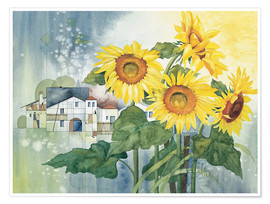 Premiumposter  Rays of sun flowers - Franz Heigl