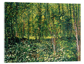 Akrylglastavla  Trees and Undergrowth - Vincent van Gogh