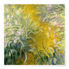 Premiumposter  iris - Claude Monet