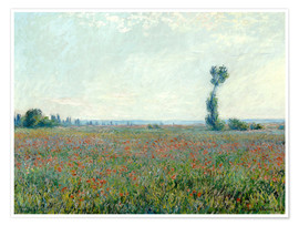 Premiumposter  Field with poppies - Claude Monet