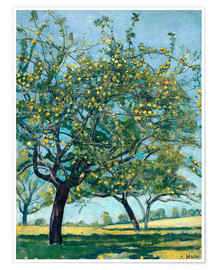 Premiumposter Paddock with apple trees