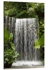 Aluminiumtavla  Waterfall in the orchid garden - Cindy Miller Hopkins