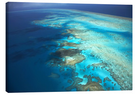 Canvastavla  Great Barrier Reef Marine Park - David Wall