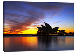 Canvastavla  Sydney Opera House in the evening light - David Wall