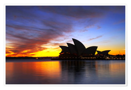 Premiumposter Sydney Opera House in the evening light