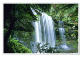 Premiumposter  Russell Falls and tree ferns - Kevin Schafer
