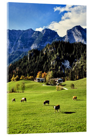 Akrylglastavla  Alps and pasture cows - Ric Ergenbright