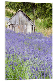 PVC-tavla  Lavender field and scales - Janell Davidson
