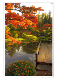 Premiumposter Japanese garden with maple
