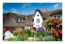 Premiumposter Amrum - thatched house with flower garden