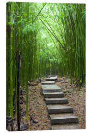 Canvastavla  Wooden path in the bamboo forest - Jim Goldstein