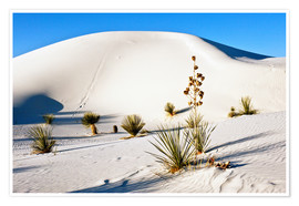 Premiumposter  Dunes of White Sands - Bernard Friel