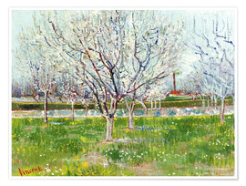 Premiumposter Blossoming orchard