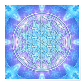 Premiumposter  Flower of Life - Dolphin Awareness - Dolphins DreamDesign