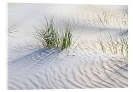 Akrylglastavla  Dunegrasses in the sand - Jürgen Klust