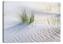 Canvastavla  Dunegrasses in the sand - Jürgen Klust