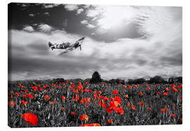 Canvastavla  Spitfire Poppy Pass - airpowerart