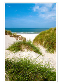 Premiumposter  Seascape with dunes and beach grass - Reiner Würz