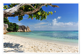 Premiumposter Wonderful Beach of the Seychelles