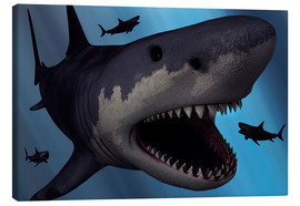 Canvastavla  A Megalodon shark from the Cenozoic Era - Mark Stevenson