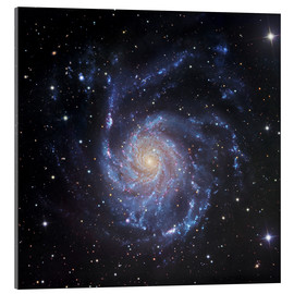 Akrylglastavla  M101, The Pinwheel Galaxy in Ursa Major - Robert Gendler
