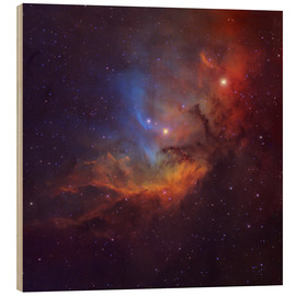 Trätavla  The Tulip Nebula in Cygnus - Robert Gendler