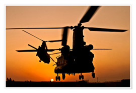Premiumposter Two Royal Air Force CH-47 Chinooks