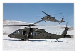 Premiumposter  Two US Army UH-60 Black Hawk helicopter