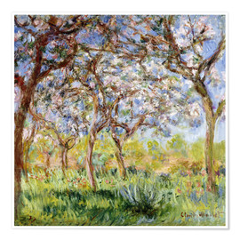 Premiumposter  Spring at Giverny - Claude Monet