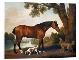 Akrylglastavla  Horse and two dogs - George Stubbs