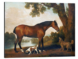 Aluminiumtavla  Horse and two dogs - George Stubbs