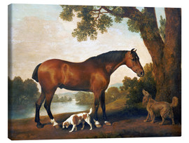 Canvastavla  Horse and two dogs - George Stubbs