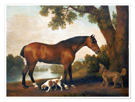 Premiumposter  Horse and two dogs - George Stubbs