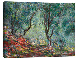 Canvastavla  The Olive Tree Wood In The Moreno Garden - Claude Monet