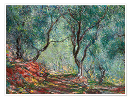 Poster  The Olive Tree Wood In The Moreno Garden - Claude Monet