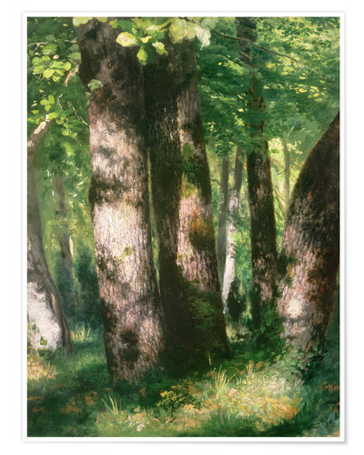 Premiumposter In the Forest of Fontainebleau