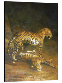 Aluminiumtavla  Two Leopards lying in the Exeter Exchange - Jacques Laurent Agasse