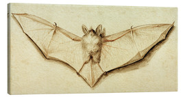 Canvastavla  Bat with spread wings - Hans Holbein d.J.