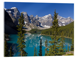 Akrylglastavla  Lake in front of the Canadian Rockies - Paul Thompson