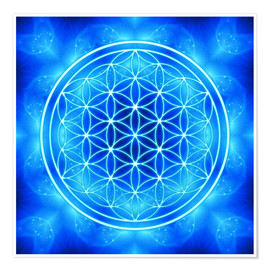 Poster  Flower of life - archangel Michael - Dolphins DreamDesign
