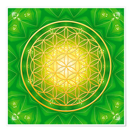 Poster  Flower of life - healing - Dolphins DreamDesign