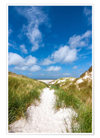 Premiumposter  Path to the beach - Reiner Würz