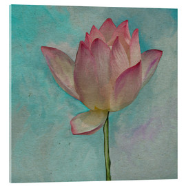 Akrylglastavla  Pink Lotus on Turquoise Blue - John Lang Art Gallery