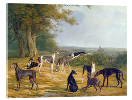 Akrylglastavla  Nine Greyhounds in a Landscape - Jacques Laurent Agasse