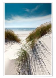 Premiumposter  Dunes with fine beach grass - Reiner Würz