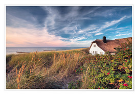 Premiumposter House beside the sea (Ahrenshoop/Darss)
